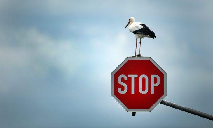 Francezët nuk e njohin shenjën 'STOP'
