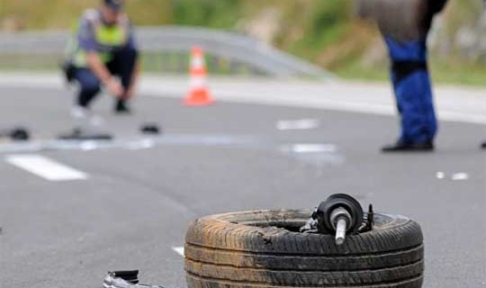 Dhjetëra aksidente komunikacioni të shkaktuara nga kafshët