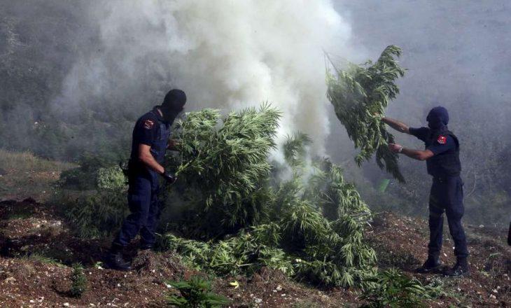 Raporti i shtetit amerikan nxjerrë Shqipërinë parajsë për trafikim droge dhe pastrim parash