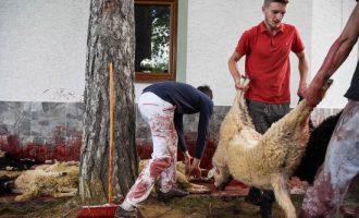 Therje delesh për një festë që bashkon të gjitha fetë në Kosovë