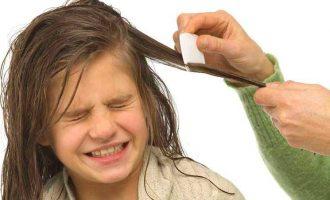 Si t'i eliminoni morrat nga flokët me receta shtëpiake