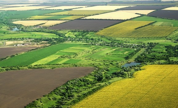 Pezullimi i privatizimit të tokave shoqërore nga Qeveria po del i kundërligjshëm