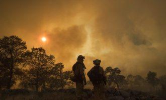 I nxehti rekord shkakton zjarre të shumta në Kaliforni