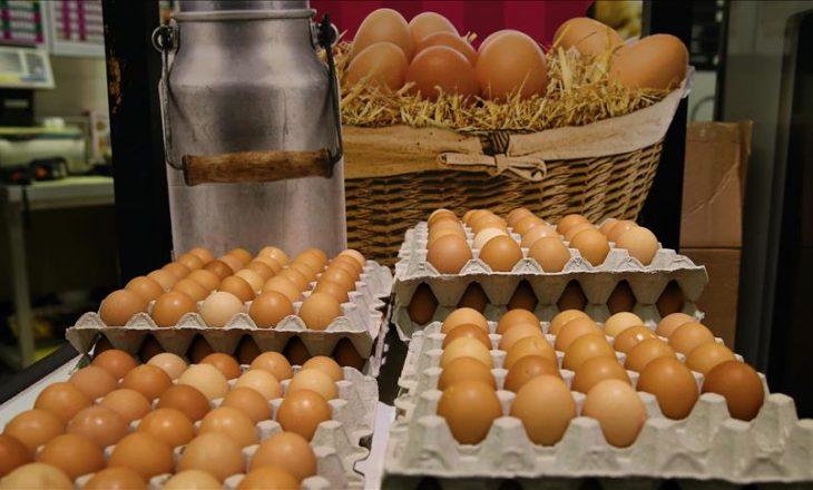 """Kriza e """"vezëve me insekticide"""" në Evropë"""