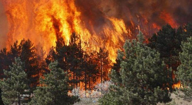 19 zjarre ende aktive, digjen tri shtëpi