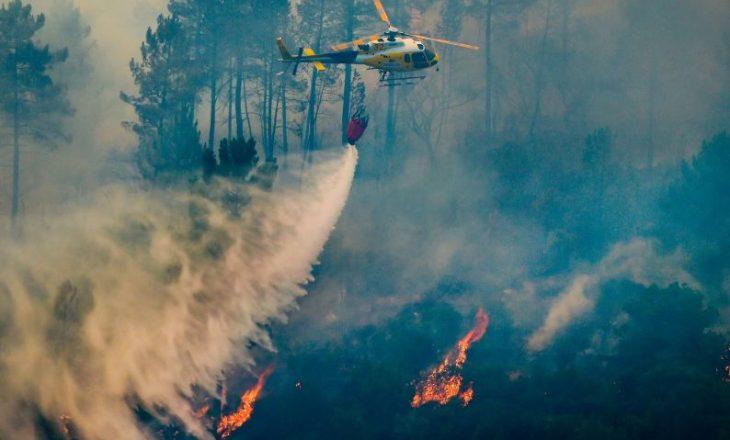 Rekord në Portugali, 220 zjarre brenda një dite