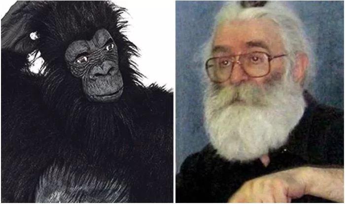 Si tentuan amerikanët të arrestojnë Karagjiqin me një kostum gorille