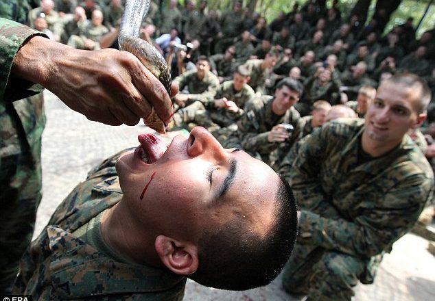 Prova e mbijetesës e marinsave amerikanë – të ushqehesh me gjarprinj