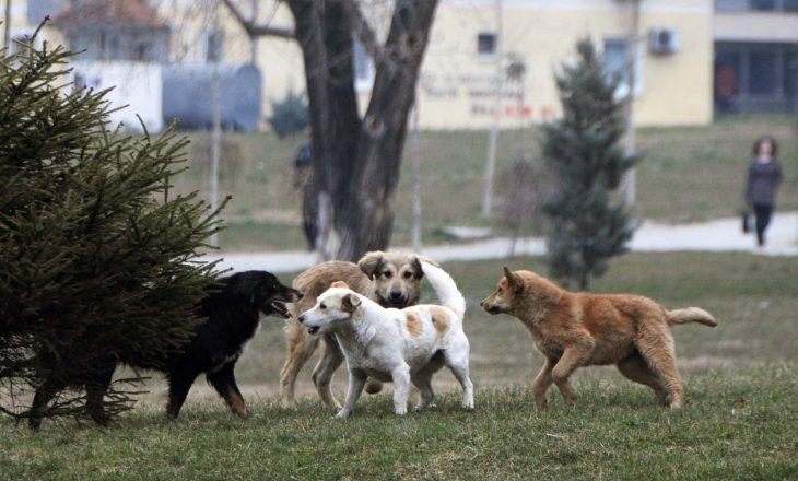 """""""Të bashkuar për kafshët"""" ka një kërkesë për kryetarin Ahmeti"""