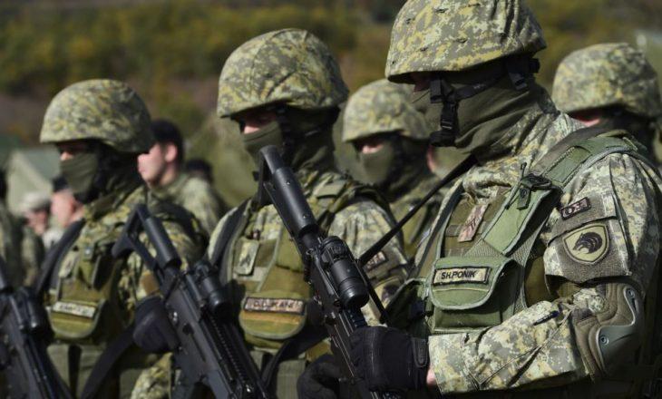 """""""FSK-së i duhen edhe shtatë vjet për tu bërë ushtri"""""""
