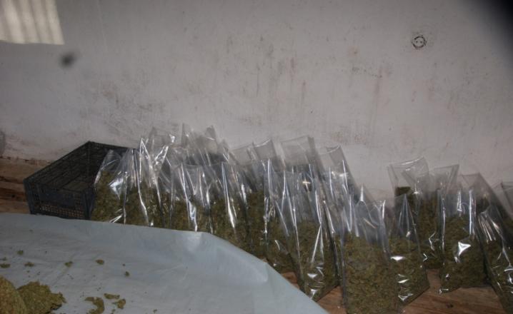Tre vjet burgim dy personave në Ferizaj për shitblerje të drogës