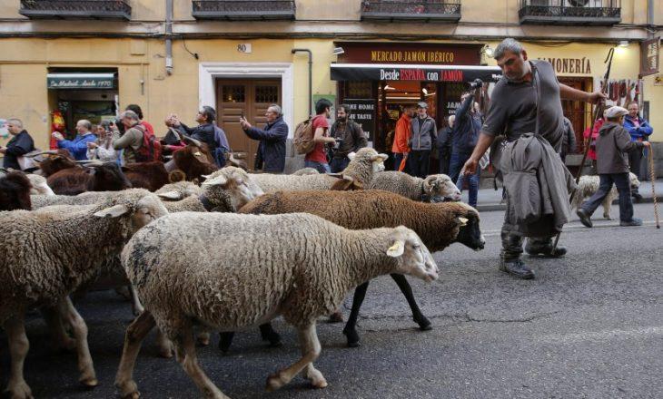 Delet e okupojnë qendrën e Madridit - Gazeta Online INSAJDERI