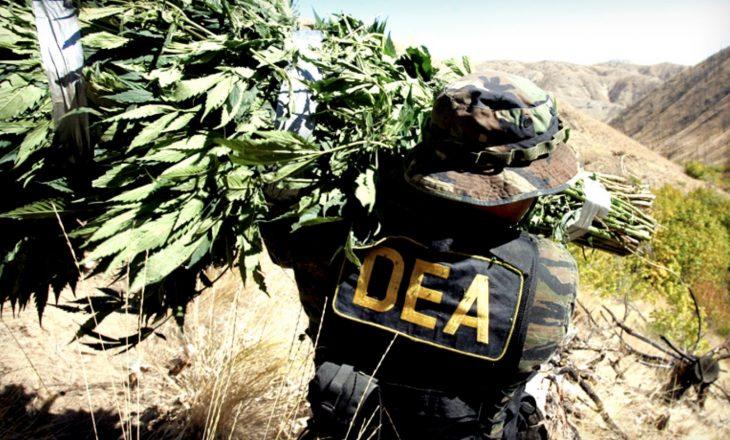 Legalizimi i drogës, rruga më e mirë për ta luftuar