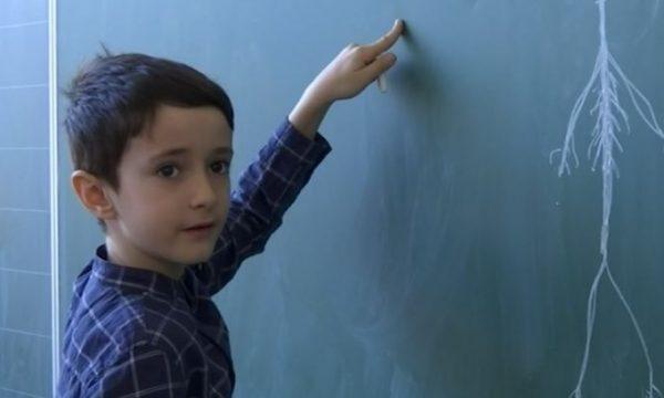 Njihuni me 8 vjeçarin kosovar i cili harton teste për mësimdhënësit
