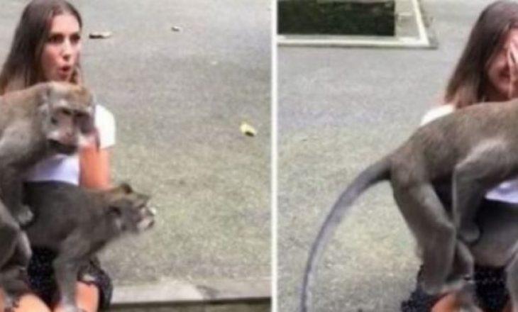 Ulet për të bërë foto me majmunët, ata nisin të bëjnë seks në prehrin e saj