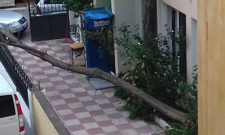 Shtrengatë e fuqishme në plazhin e Velipojës, pushuesit i kap paniku