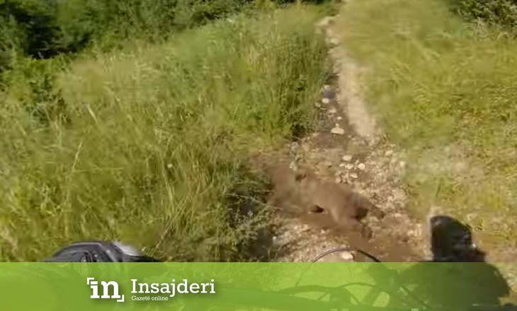 Biçiklistëve u dalin arinjtë përpara në Suharekë