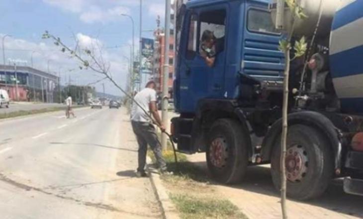 Qytetari këput pemën pasi e pengon të qarkullojë me kamion