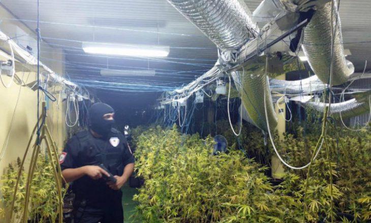 Tonelata marijuanë, zbulohen dy laboratorë gjigantë droge