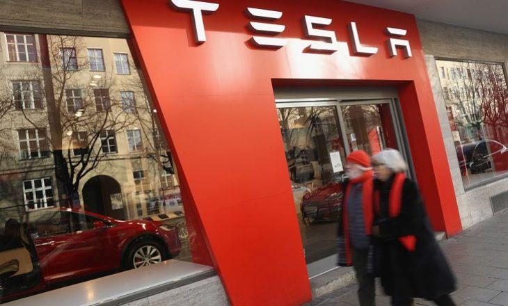 Gjykata gjermane ndalon ndërtimin e fabrikës Tesla për shkak se rrezikon kafshët