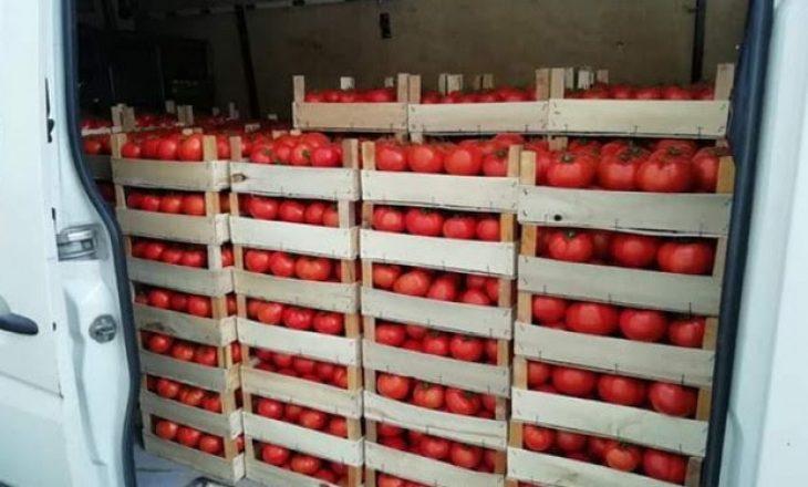 Transportonte domate pa dokumentacion përcjellës