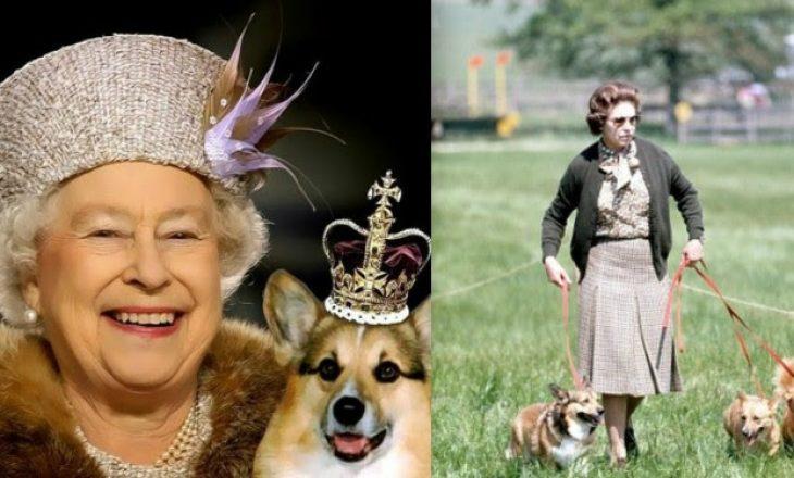 Meghan dhe princ Harry braktisin pallatin për shkak të qenit