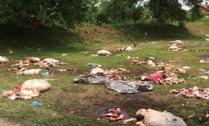"""""""Masakra e kurbanëve"""", reagon Drejtori i Urbanizmit: Harrojeni sevapin"""