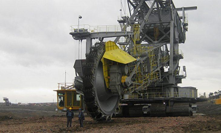 Ukraina importon 400 mijë tonë thëngjill nga Kolumbia, të njejtën sasi Kosova mund ta prodhojë për 15 ditë