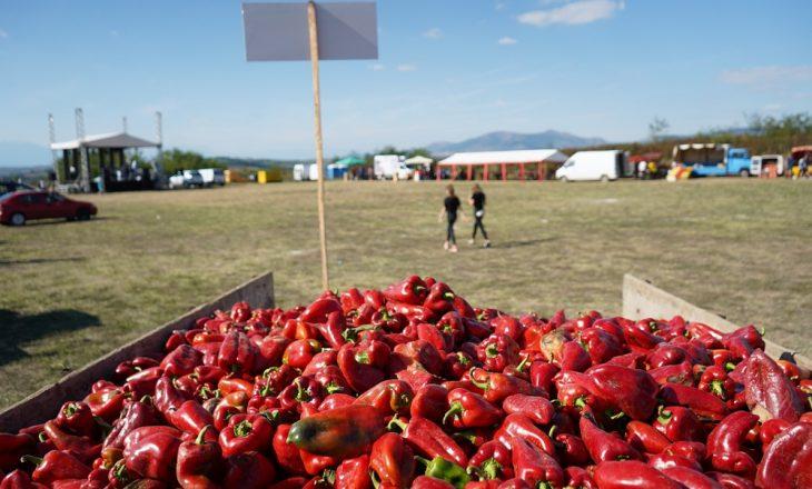 """""""Agrofesta"""" – festivali që po paraqet punën e heroinave të Krushës"""