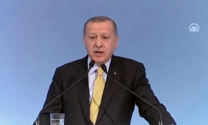 Rama ia publikon fjalimin, Erdogan: Po të kapemi përdore, e ngremë Shqipërinë në këmbë