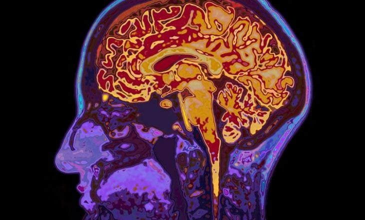 CODIV-19/ Si reagon truri gjatë ditëve të izolimit?