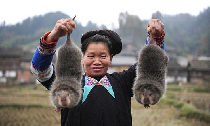 Kinezët nuk i 'shkëputen' traditës – I 'rikthehen' përsëri minjve