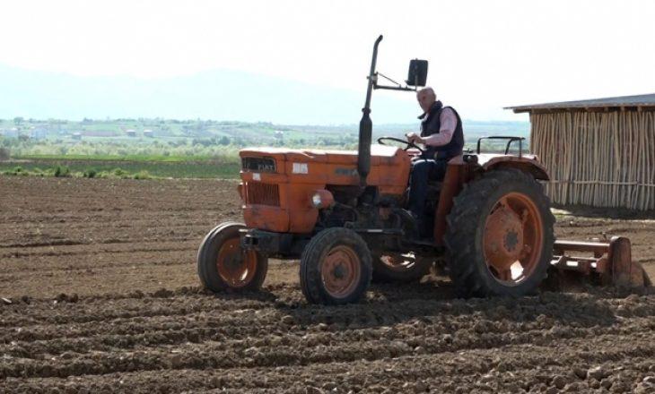Puna 50 vjeçare e familjes Hoti në bujqësi këtë vit rrezikon shuarjen shkaku i koronavirusit