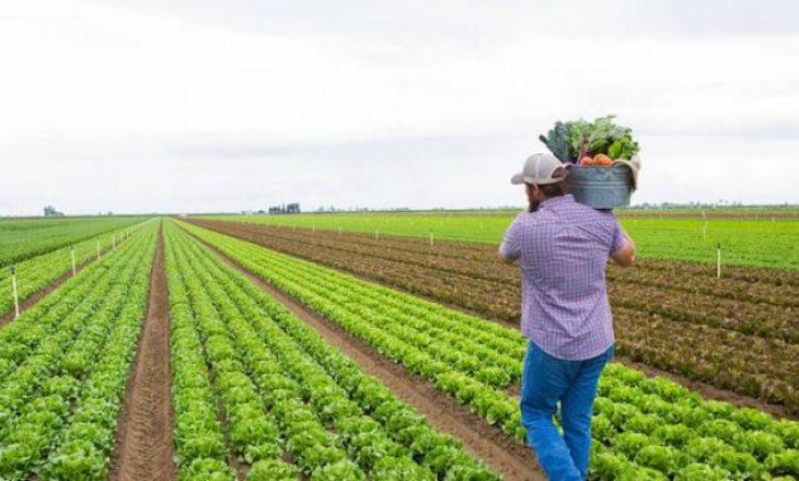 Ankohen fermerët: Prodhimtaria bujqësore është duke falimentuar