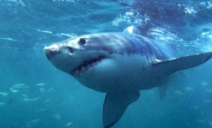 Peshkaqeni i bardhë vret një grua amerikane