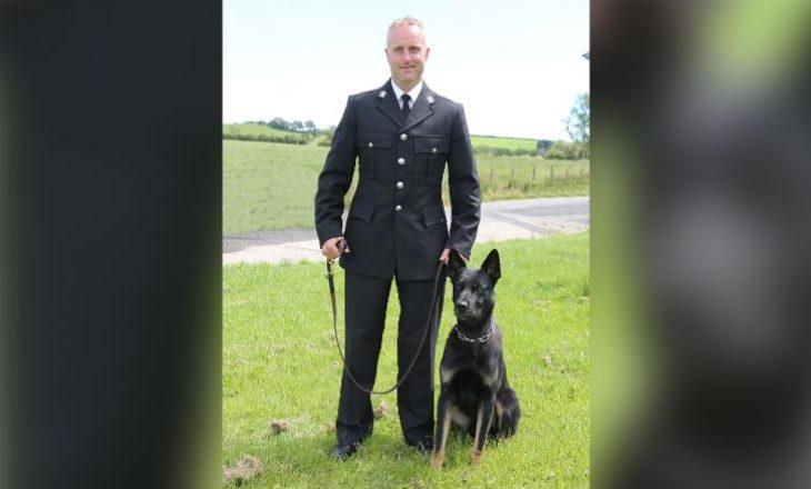 Që ditën e parë të punës ky qen policie u bë hero