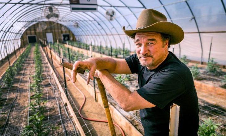 Jim Belushi tani në një rrugëtim të ri – si fermer i marihuanës