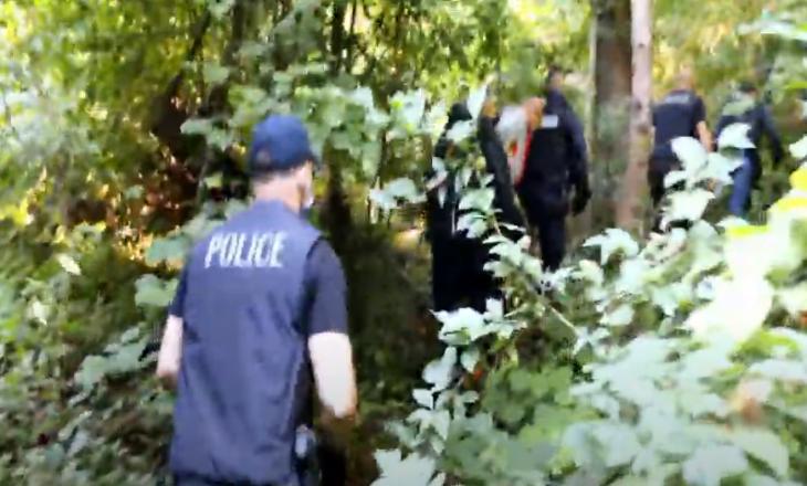 Operacioni i policisë – arrestohen katër persona, kultivonin narkotikë (VIDEO)