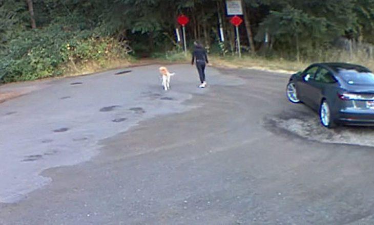Gruaja kapet në kamerat e sigurisë teksa braktisë qenin e saj në një pyll