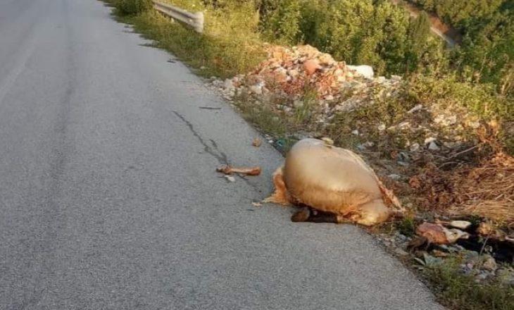 Mbetjet e kurbaneve hidhen në rrugë