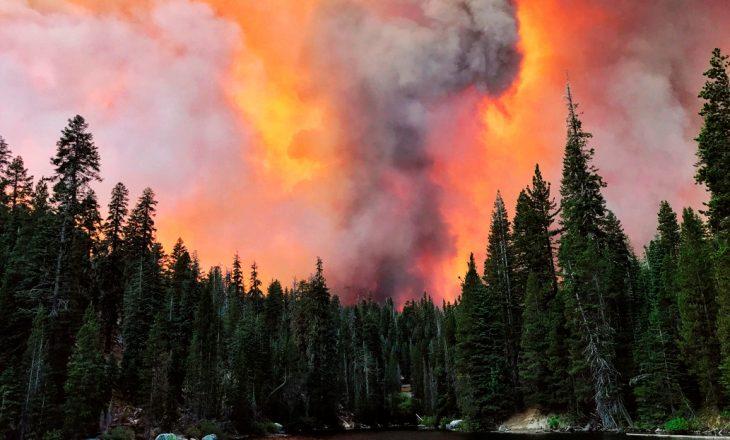 Filmon veten i ngecur në zjarr nga katër anët – kërkon ndihmë