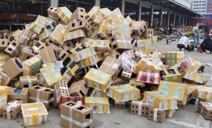 Kinë: Gjenden 5 mijë kafshë të ngordhura në kuti kartoni
