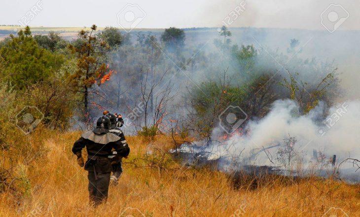 Nga zjarret në Ukrainë janë shënuar pesë viktima
