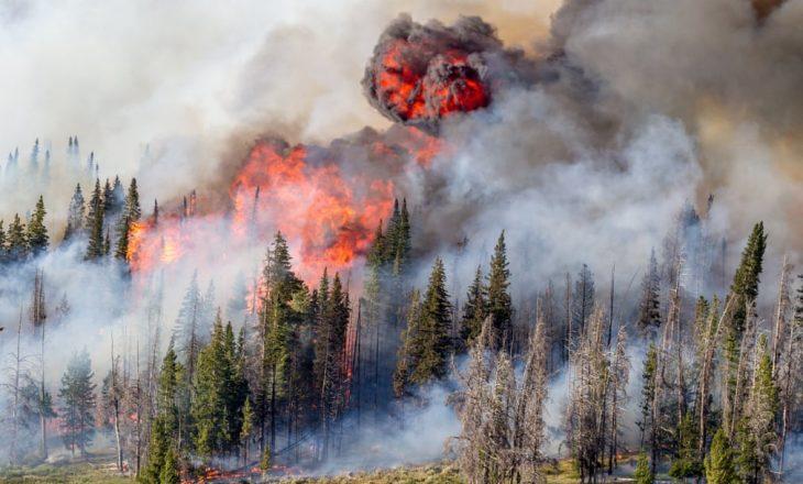Planeti i brishtë: Dokumentimi i krizës klimatike përmes fotografive