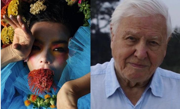 David Attenborough rikujton bashkëpunimin me Bjork