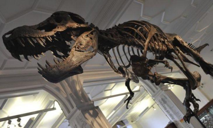 Shitet për 31.8 milionë dollarë fosili i Tyrannosaurus Rex