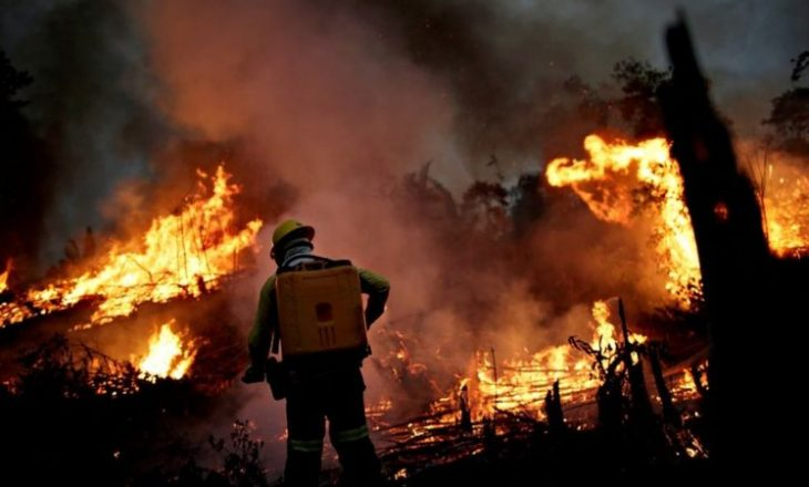 Numri zjarreve në Amazon është rritur më shumë se kurrë më parë