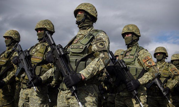 """Nëse """"kris"""" lufta, sa ushtarë mobilizohen, pyet profesori universitar"""