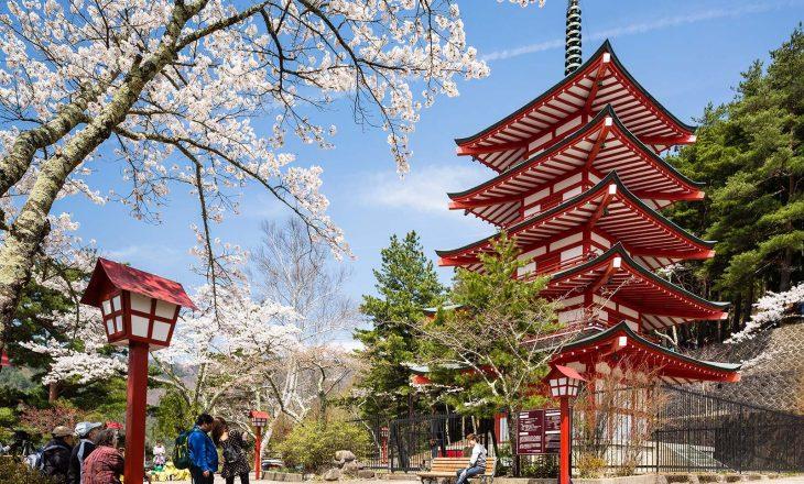 Çfarë e bën Japoninë një vend të veçantë për të jetuar?