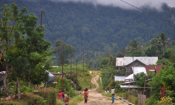 Shpyllëzimi i pyjeve të Amazonës ka arritur nivelin më të lartë